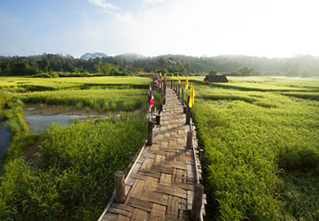 eco-tour-at-khum-lanna-lodge-in-the-north-of-thailand