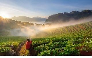 Thailand-travel-guide-Doi-Ang-Khang-Chiang-Mai-Thailand