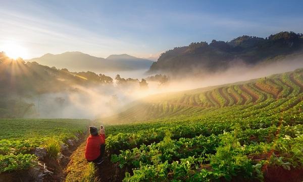 Travel guide Doi Ang Khang Chiang Mai Thailand.