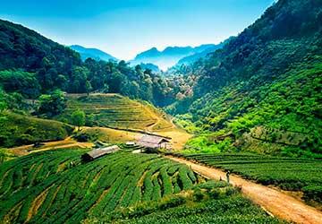 Eco-trek trekking in Chiang Mai Thailand